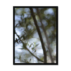 'Ethereal Nature 2' by Michael Banks Framed Print