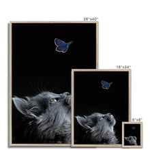 Load image into Gallery viewer, Butterflying | Animal Print Wall Art | MGallery, Take a unique design to your gallery wall with Animal Print Wall Art with variety of sizes! Shop our unique collection of Contemporary Animal Print Wall Prints.-mgallery