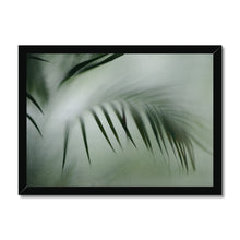 Load image into Gallery viewer, 'Palm etch 4' by Michael Banks Framed Print