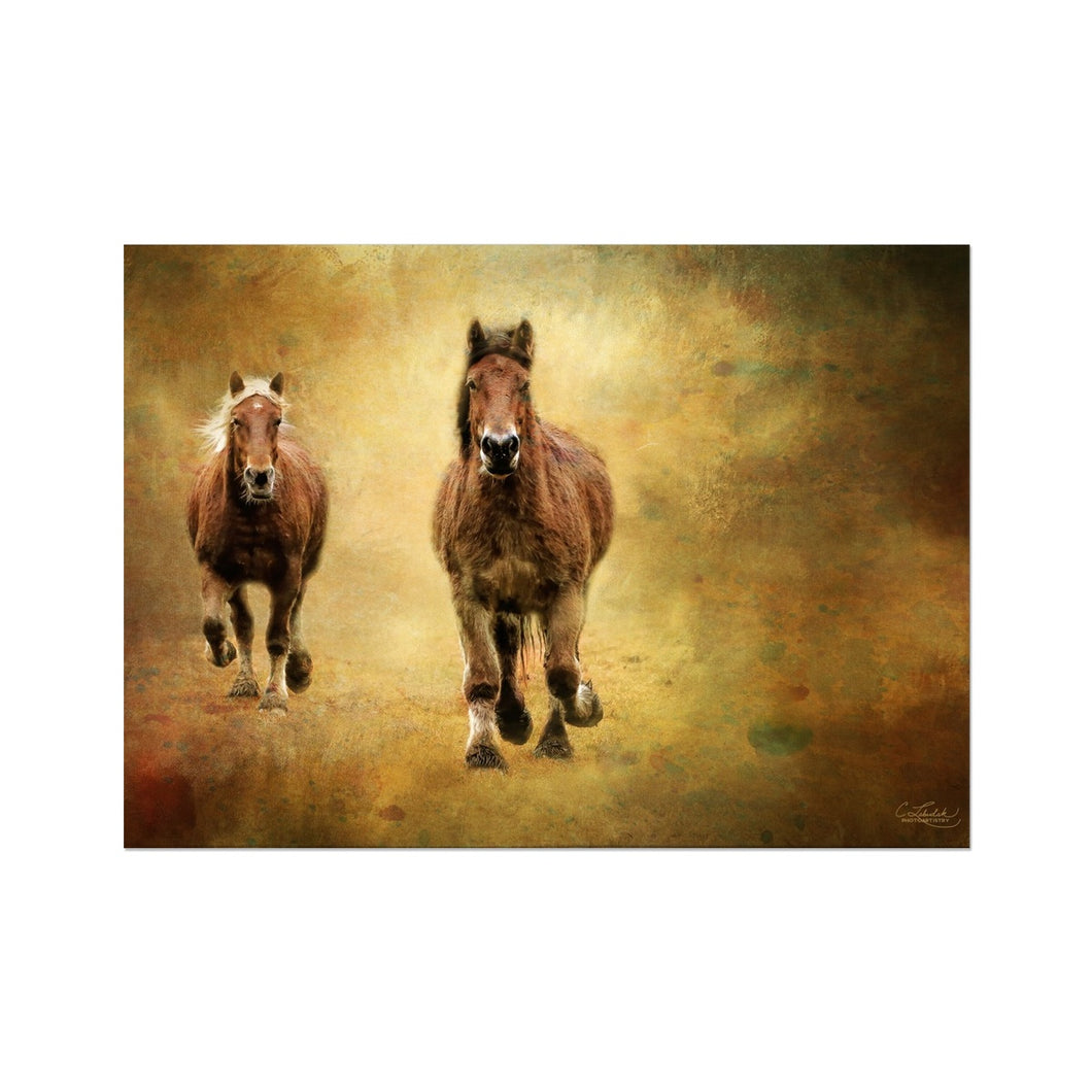'Home Coming' by Cathy Labudak Fine Art Print