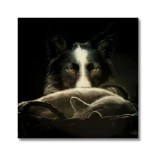 Load image into Gallery viewer, Calm Before The Storm | Animal Digital Art Pictures | MGallery, MGallery is the best way to find the Animal Digital Art Pictures for decorating your bedroom. We have a beautiful collection of Bedroom Digital Animal Wall Art, Buy now!-mgallery