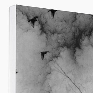 The Thunder Rolled | Black and White Art Decor | MGallery, Decorate your walls with MGallery Unique Nature Art Prints, Thrill your walls now with Unique Black and White Art Decor . Shop the full range at MGallery!-mgallery