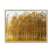 Load image into Gallery viewer, 'Trees Texture 1' by Michael Banks Framed Print