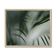 Load image into Gallery viewer, 'Palm etch 2' by Michael Banks Framed Print