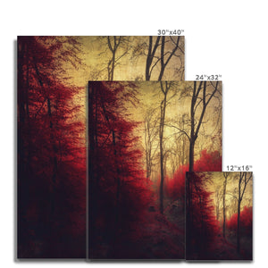 'Ruby Red Forest' by Dirk Wüstenhagen Canvas