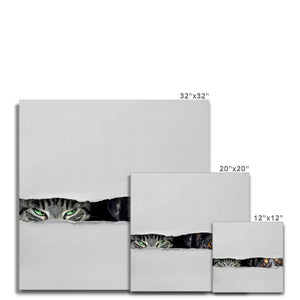 Cat Astrophe | White Canvas Wall Art Prints | MGallery, Design your gallery wall with White Canvas Wall Art Prints. Shop MGallery to find your beautiful Light Colour Art Prints. Delivered ready to hang.-mgallery