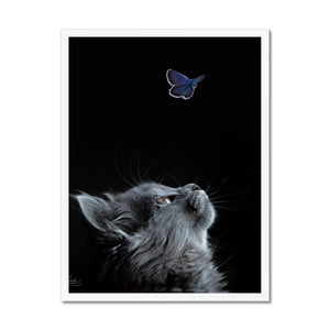 Butterflying | Animal Print Wall Art | MGallery, Take a unique design to your gallery wall with Animal Print Wall Art with variety of sizes! Shop our unique collection of Contemporary Animal Print Wall Prints.-mgallery