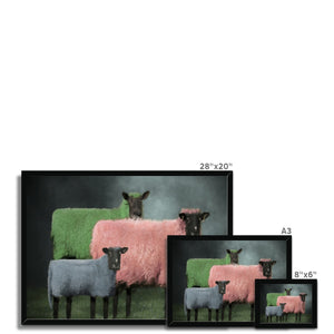 Sheep Portraits | Animal Portrait Contemporary Art | MGallery, Animal Portrait Contemporary Arts for you! Find a wide range of elegant Bright Coloured Animal Portrait Prints at MGallery. Delivered ready to hang.-mgallery