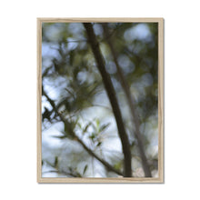 Load image into Gallery viewer, 'Ethereal Nature 2' by Michael Banks Framed Print