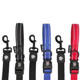 Stop & Go Shock Absorbing Bungee Dog Leash