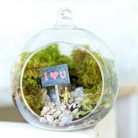 I Heart U Orb Terrarium by House of Botanica