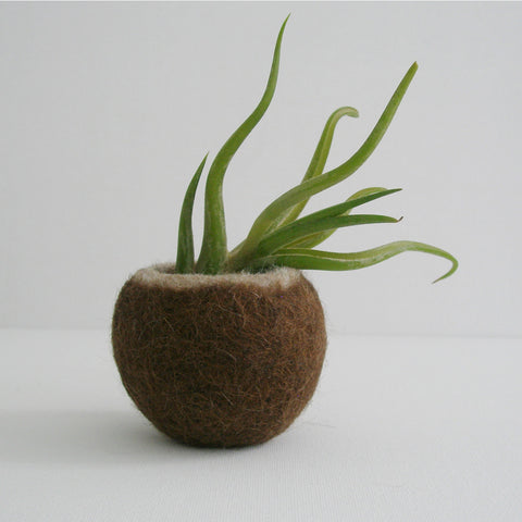 Llama Fur Air Planters - Brown From Foxhill