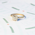 Evergreen Solitaire Ring (MT6209)