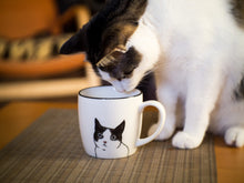 Load image into Gallery viewer, Peering Cat Mug
