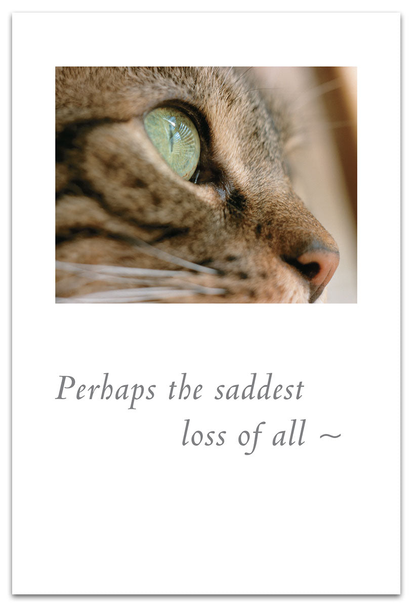 Perhaps The Saddest Love Of All Card