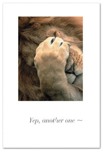 Yep, Another One Paw-faced Lion Card
