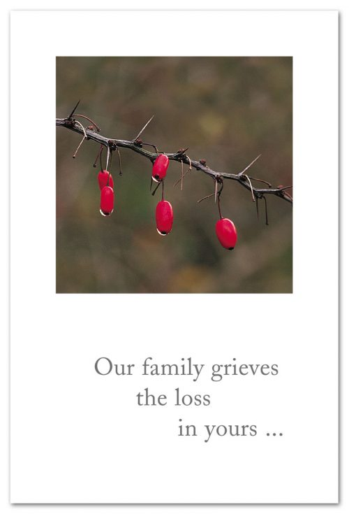 Our family grieves the loss in yours...