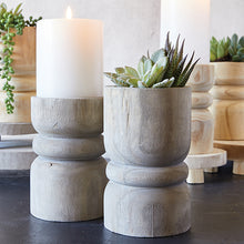 Load image into Gallery viewer, LARGE SUCCULENT PILLAR - GREY PAULOWNIA WOOD
