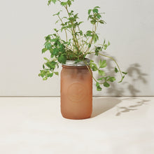 Load image into Gallery viewer, Garden Jar - Parsley