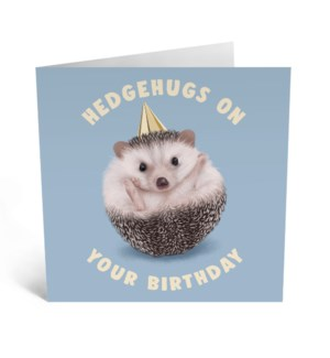 Hedgehugs On Your Birthday Card