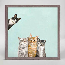 Load image into Gallery viewer, Green Box Art Feline Friends - Three Cats Plus One - Aqua Mini Framed Canvas