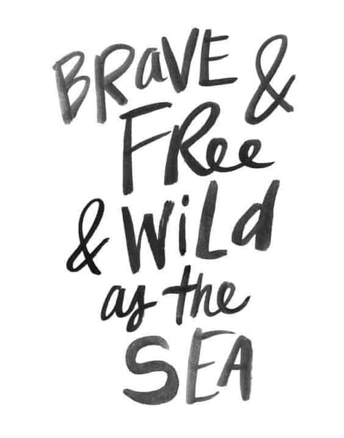 Brave and wild
