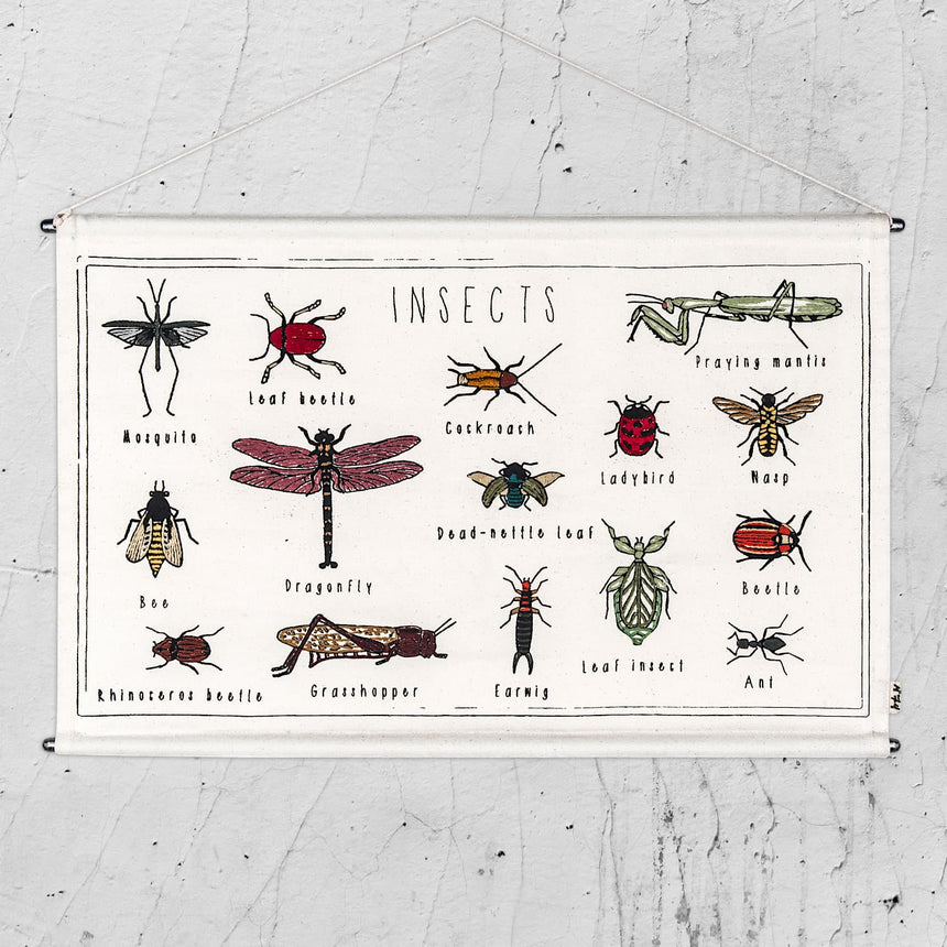 Numero 74 - School Poster Insects - Natural - S000