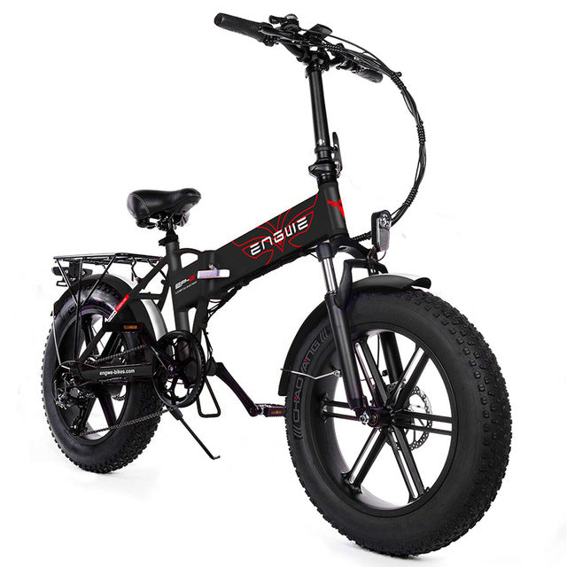 Electric bike 48V12A Lithium Battery 20