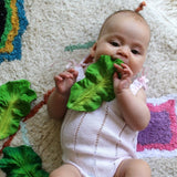 Teether - Kale