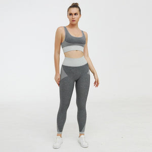 Seamless Kint Legging
