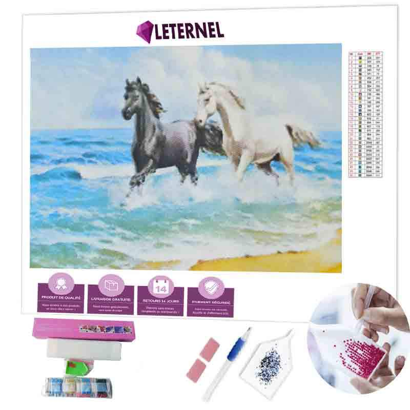 Diamond painting balade chevaux mer