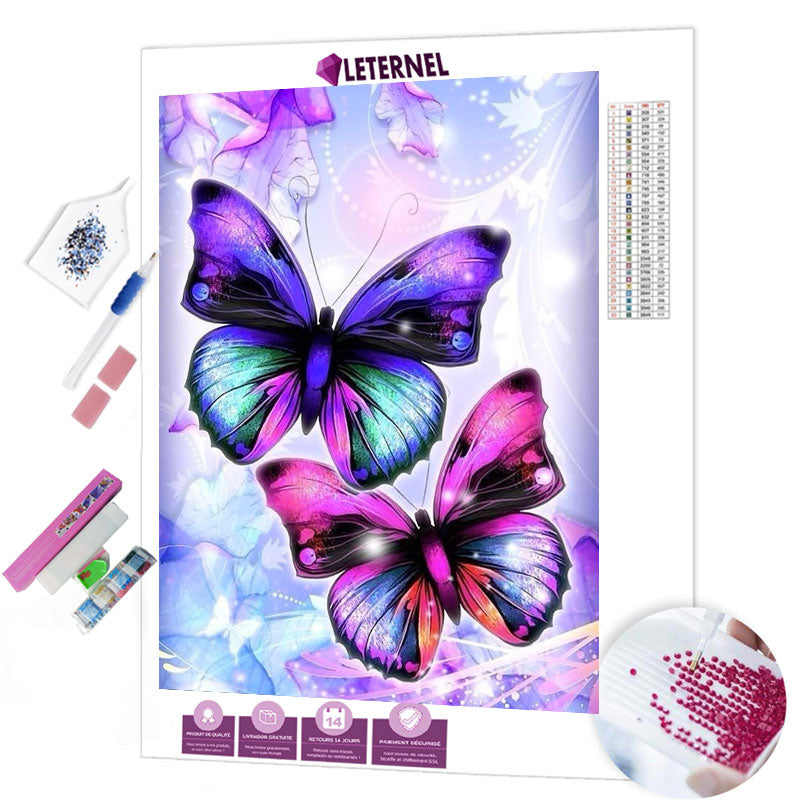diamond painting duo papillon