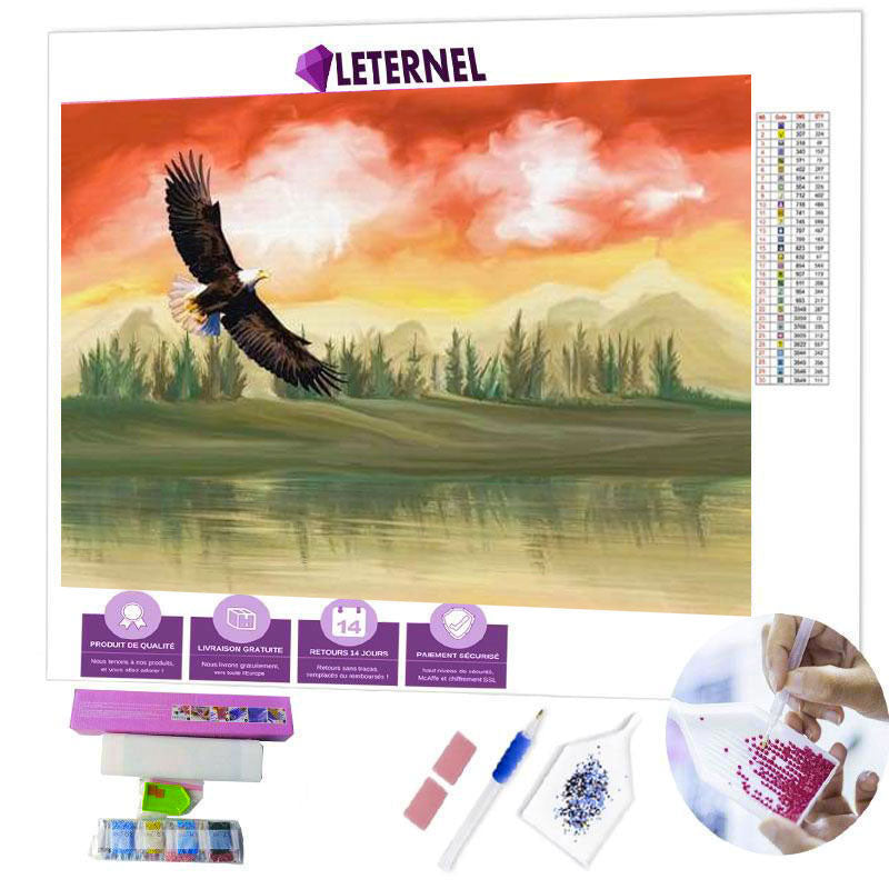 diamond painting aigle en plein vol