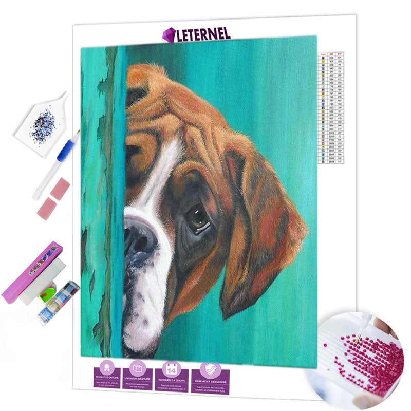 diamond painting saint bernard
