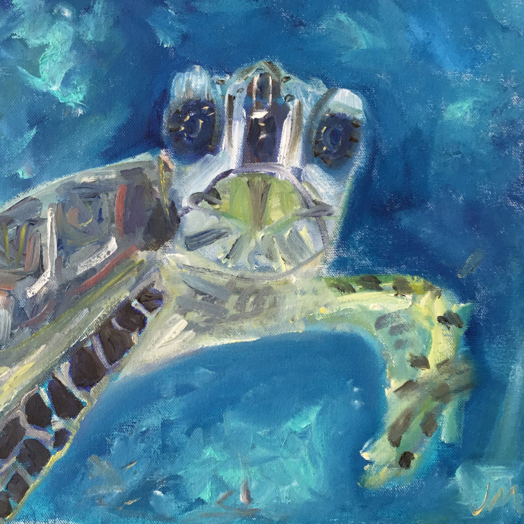 Noggin Buddy- Sea Turtle Oil Painting