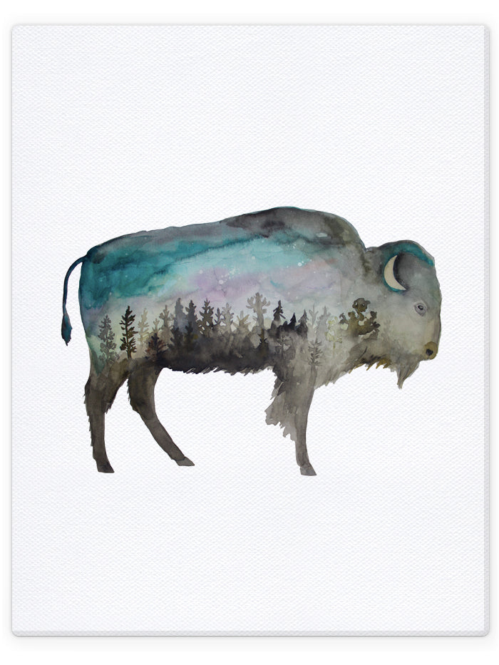 Double Exposure Bison / Buffalo