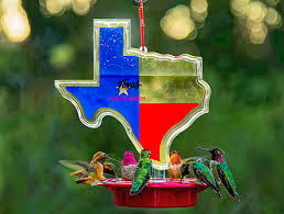 Texas Hummingbird Feeder