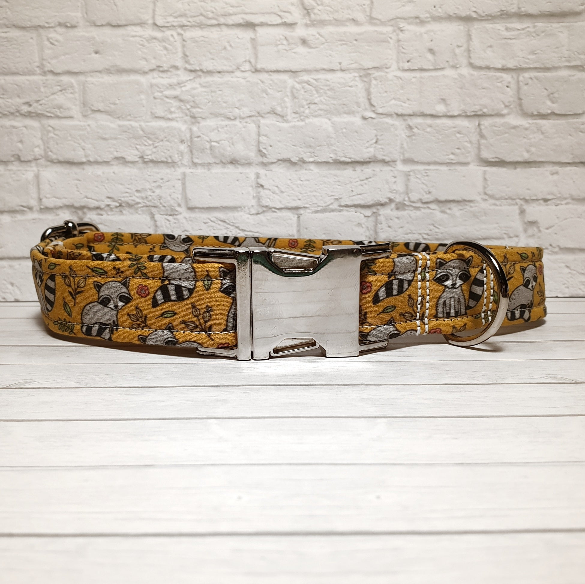 Raccoon Dog Collar