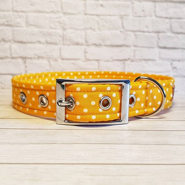 Yellow Polka Dot Dog Collar