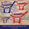 4th of July Halter/Lead Bundle