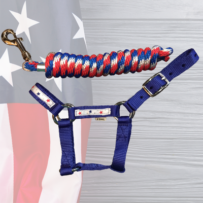 Patriotic Halter+Lead Combo...while supplies last