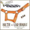 Halter + Lead Bundle