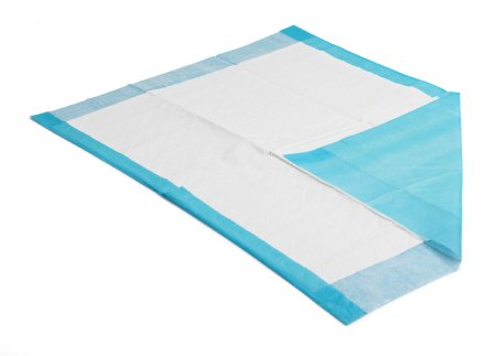 Procedure Underpad  17 X 24 Inch Blue NonSterile