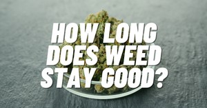 How long does weed stay good? A closer look