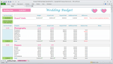 Georges Wedding Budget Spreadsheet - Pro
