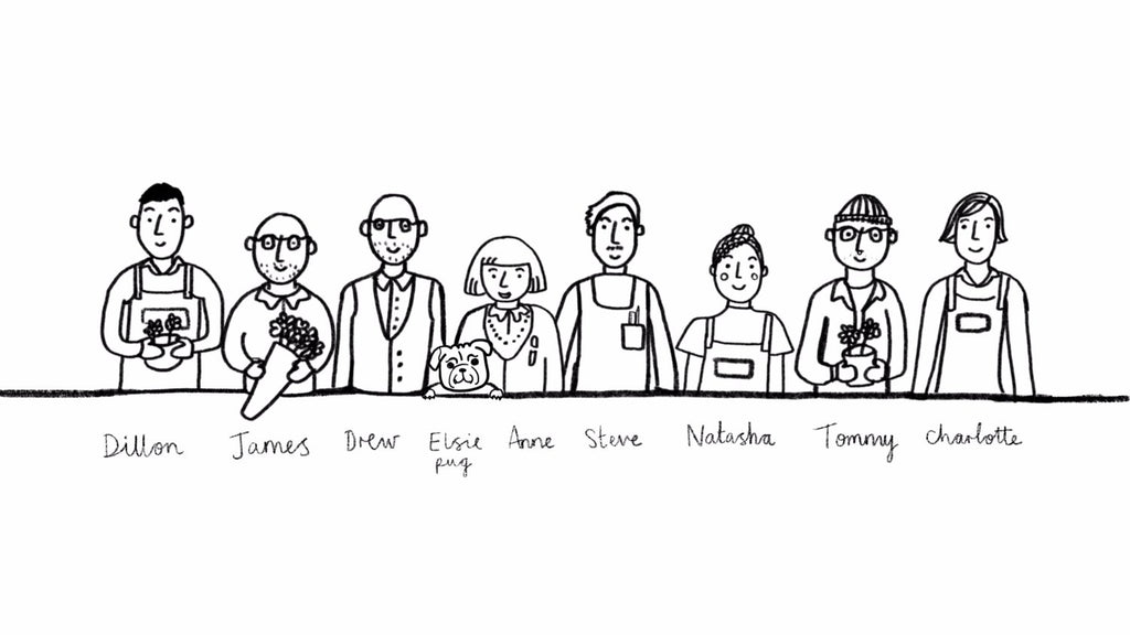 The H&Co Family.   Illustration by Tommy Pang @tommypang89