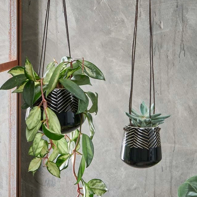 Kavara Hanging Planter - Assorted