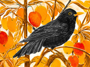 Card Blackbird and Crab Apples