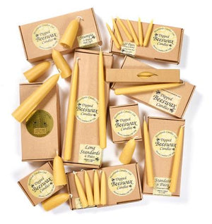 Beeswax Candles - Standard 230x22mm