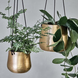 Atsu Hanging Planter - Assorted